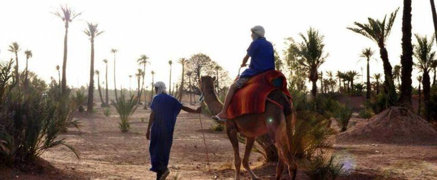 Ballade a dos des chameaux