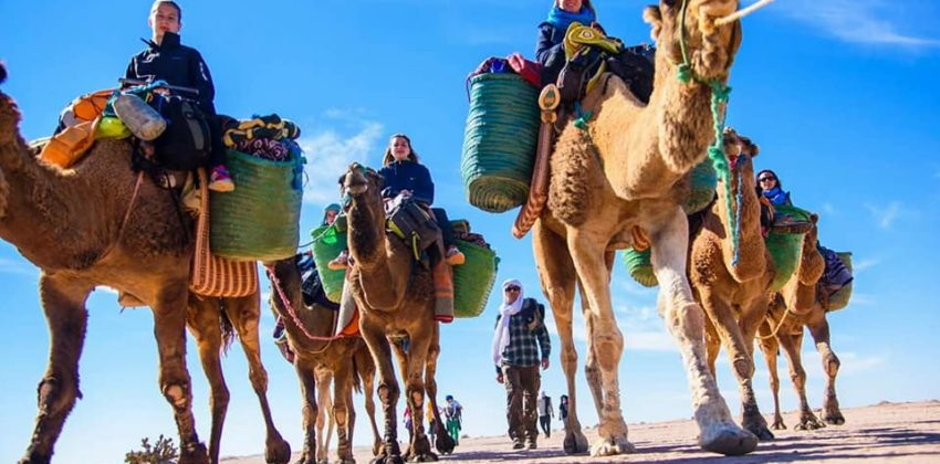 Morocco Private Excursions